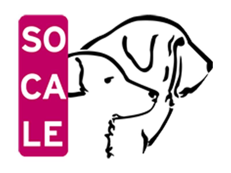 Sociedad Canina Leonesa