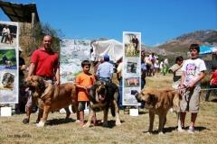 EXC 1º - San Emilliano 2012