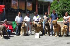 EXC 1º - Villablino 2011